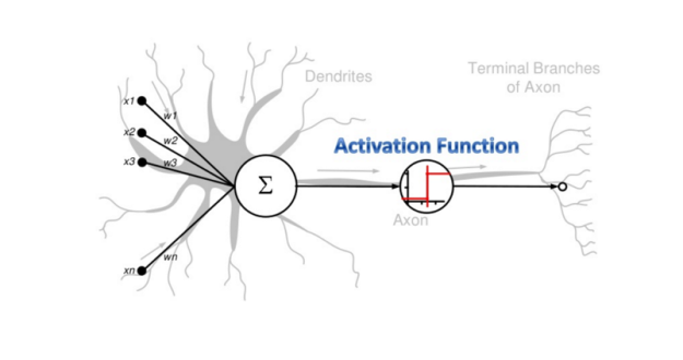 human-neural-network-cell